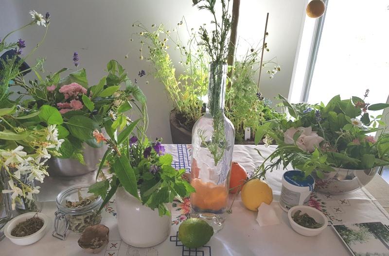 Happy Spirit Days, Tanja Hilgers, wildkruidenvrouw